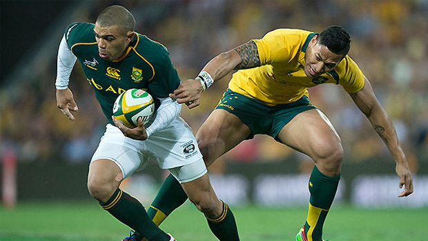 Springbok Player Ratings vs South Africa