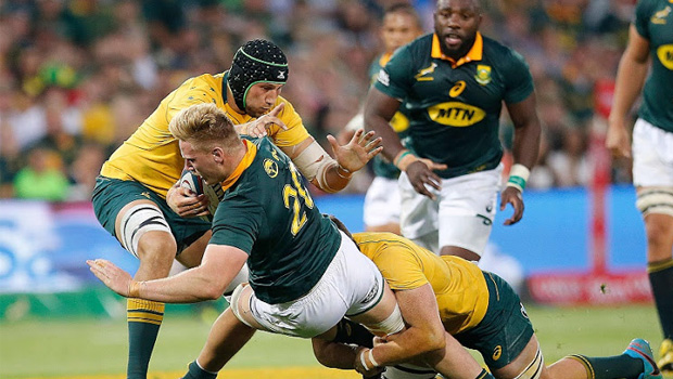 Springbok Player Ratings Australia