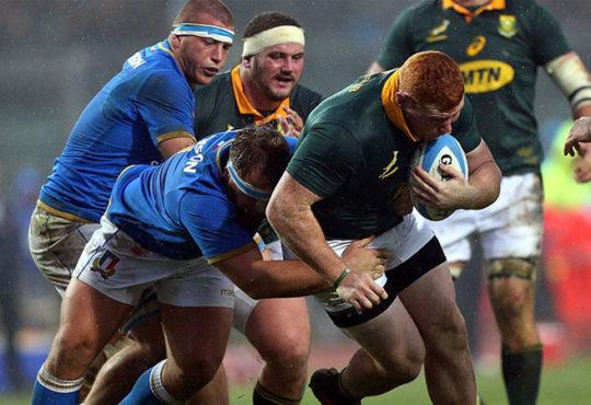 Springboks vs Italy