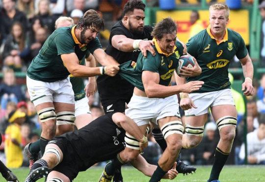 The Springbok Attacking Focus