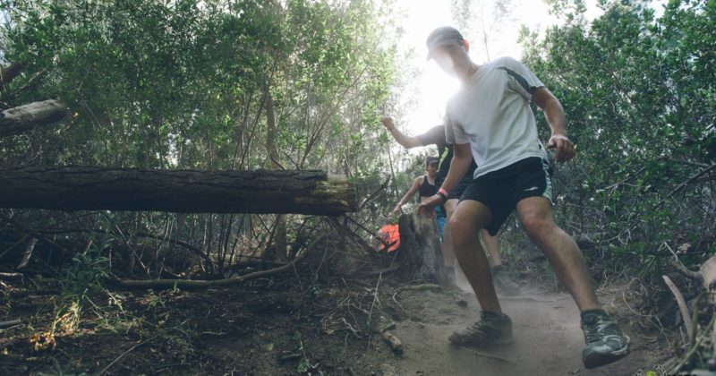Runners at the IMPI Challenge in Cape Town