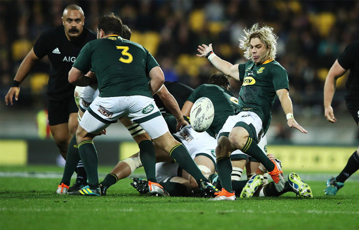 Springbok Player Ratings New Zealand