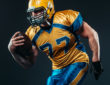 NFL Football Preview